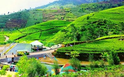 Menikmati Segarnya Udara Pegunungan di Desa Wisata Nglinggo